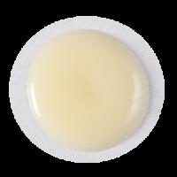 vanille-kremeux-aliments-charpentier